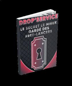 Ebook Dropservice